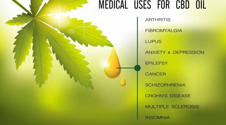 Introduction to CBD Oil and Its Different Forms for Newbies of CBD